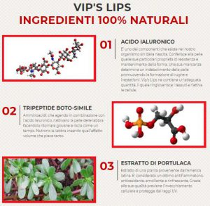 vips lips ingredienti