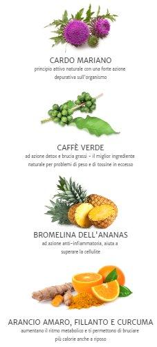 ultrametabolismo ingredienti naturali
